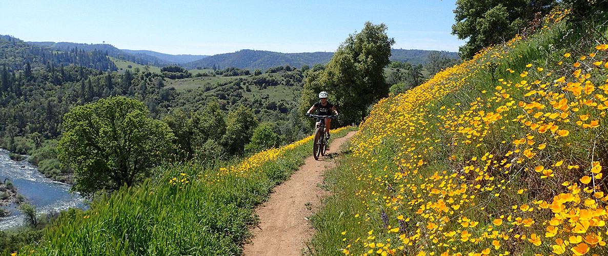mountain biking above the South Fork